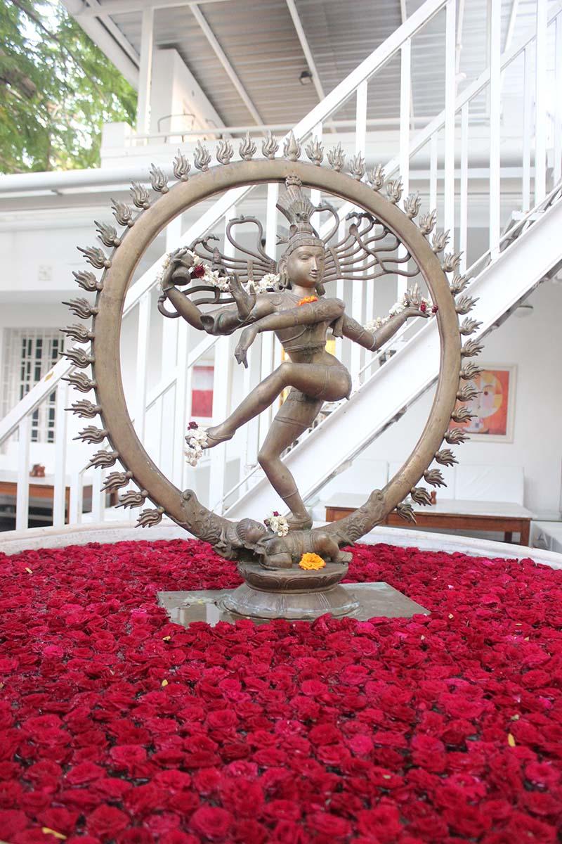 Pondicherry-dalalba-08